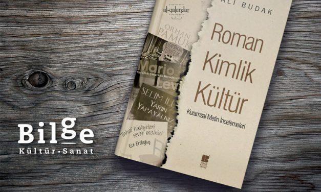 Roman, Kimlik, Kültür Kuramsal İncelemeleri