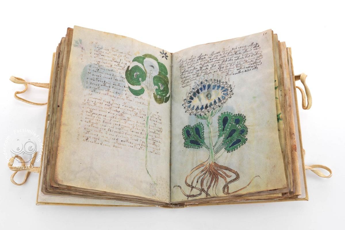 """Sırrı Çözülemeyen Kitap: """"Voynich"""""""