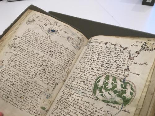 Sırrı Çözülemeyen Kitap Voynich